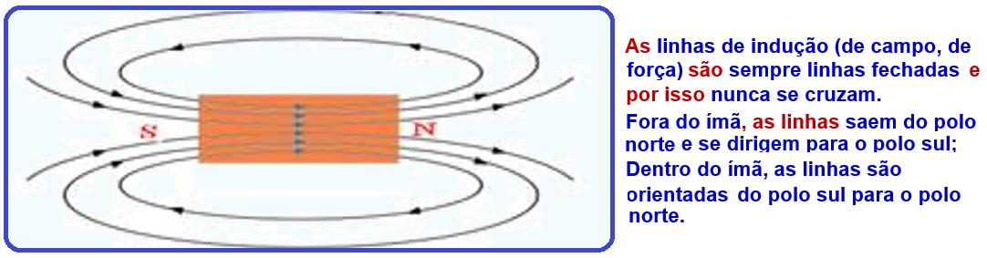 285a182ada6 Analise na figura abaixo as linhas de indução do campo magnético terrestre  e observe que a agulha magnética de uma bússola tem a propriedade de se  alinhar ...
