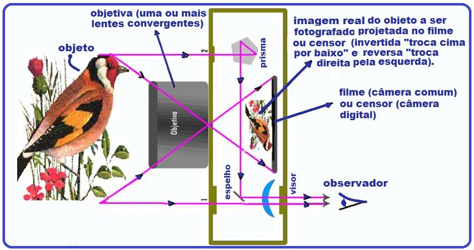 ff041e8215398 Quando queremos focalizar a imagem devemos variar a distância lente-filme  ou seja